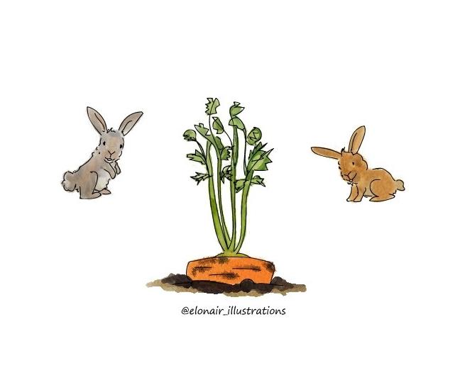 bunny1firma