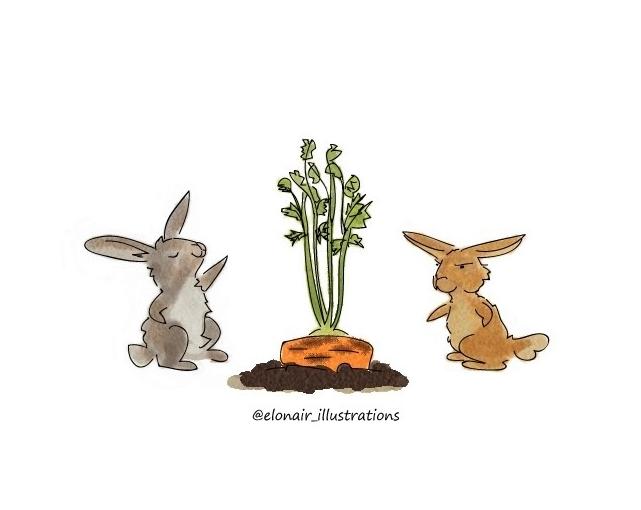 bunny2firma.jpg