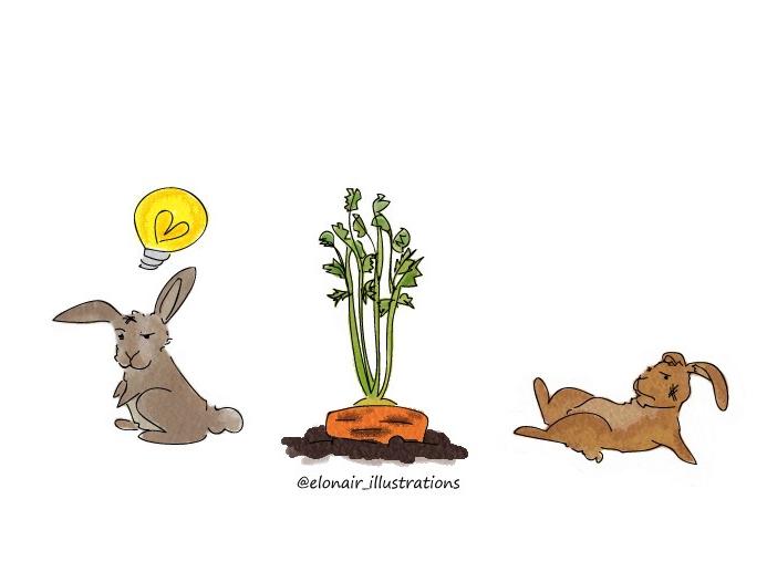 bunny5firma