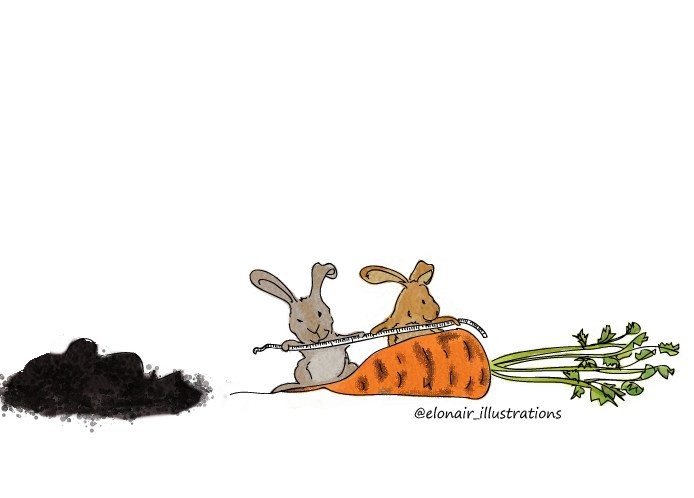 bunny7firma