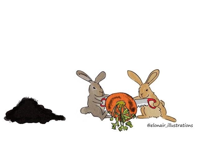 bunny8firma
